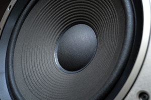 Close up of a low frequency subwoofer speaker