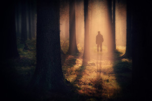 Man walking through misty forest creating shadow