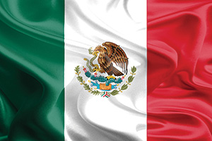 Waving Mexican flag