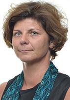 Karen Van den Driessche, Avnet