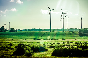 Green fields with wind farm