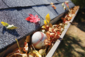 Baseball stuck in a rain gutter full of leaves