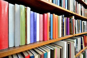 Bookcase full of colourful books