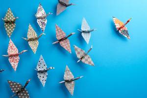 Origami birds hanging on a wall