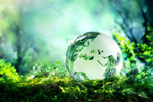 Glass globe in the woods