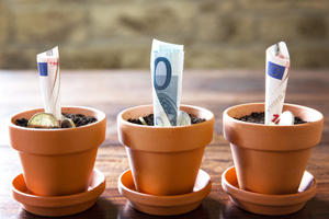 Euro notes and coins growing out of three plant pots