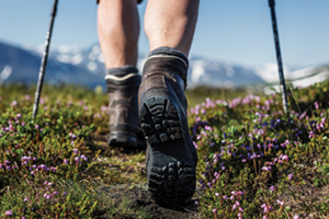 Hiker walking in the moutains on a trail with flowers