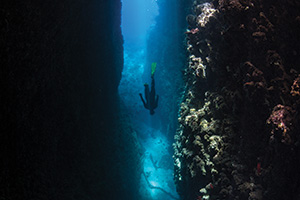 Scubba diver plunging into the deep sea