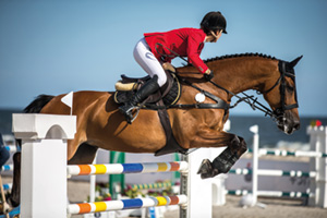 Horse jumping over fence at event