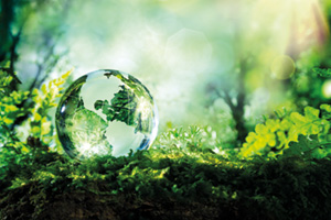 Crystal globe resting on the ground in a green forest