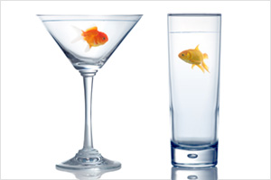 Two different goldfish in two different shape of glasses