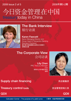 Treasury Today in China Issue 2 2008