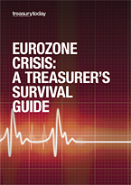 Eurozone Crisis: A Treasurer's Survival Guide cover