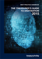 The treasurer's guide to digitisation 2015