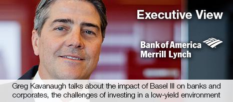 Greg Kavanaugh, Bank of America Merrill Lynch