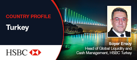HSBC Country Profile – Turkey