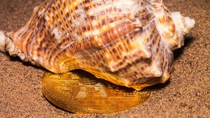 Crypto-currency next to a sea shell on sand