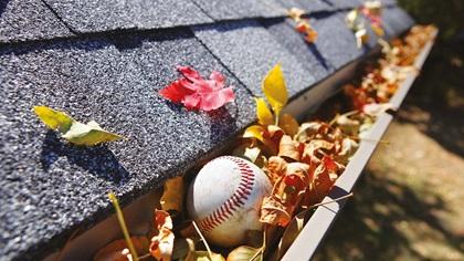 Baseball stuck in a rain gutter full of leaves