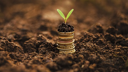 Stack of coins in soil with small plant growing out of the top