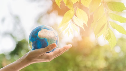 Person holding globe of Earth against a tree