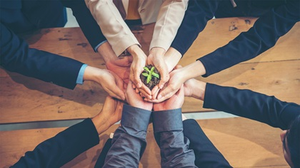Business people putting their hands to the middle of the table to jointly hold a plant