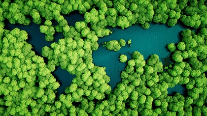 Rainforest shaped as the world map