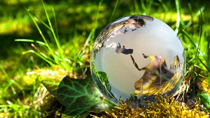 Glass globe sitting on plants and grass