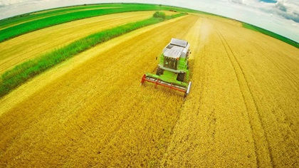 Aerial shot of a combine harvester in a corn field