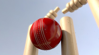 Curve Ball - red leather cricket ball