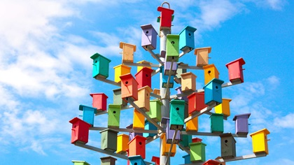 A tree of colourful bird boxes