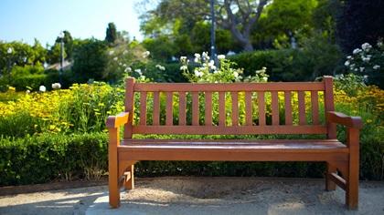 Bench in beautiful gardens