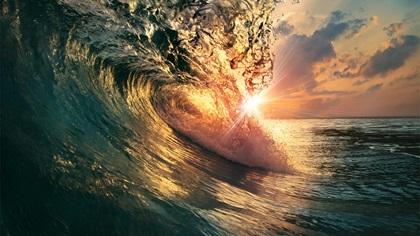 Big curl wave at dusk