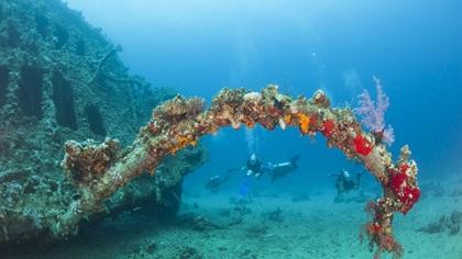 Scuba divers exploring old shipwreck
