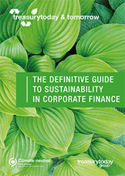 The definitive guide to sustainability in corporate finance supplement cover