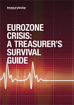 Eurozone Crisis: A Treasurer's Survival Guide cover